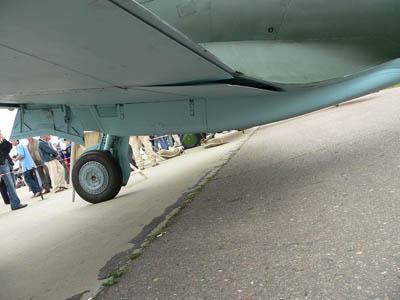 wing15