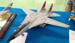 F-14 da Manu